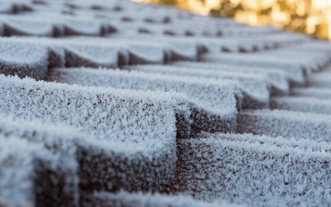 Three tips to winterizing your roof